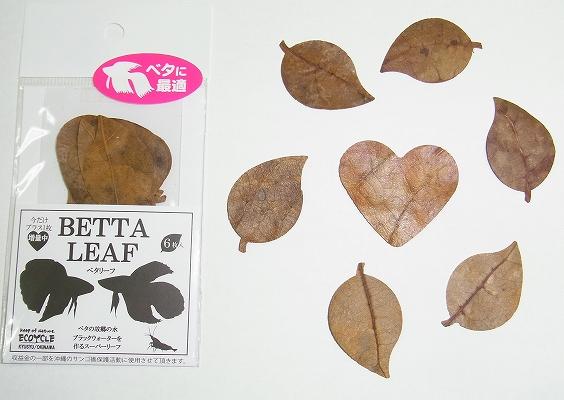 BETTA LEAF(ベタ・リーフ)