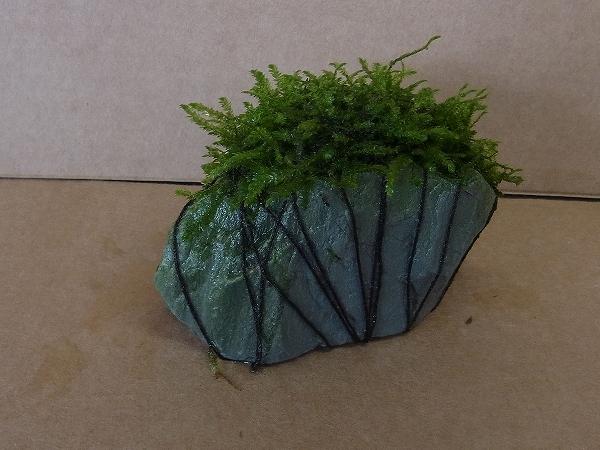 ウィローモス付玄武岩
